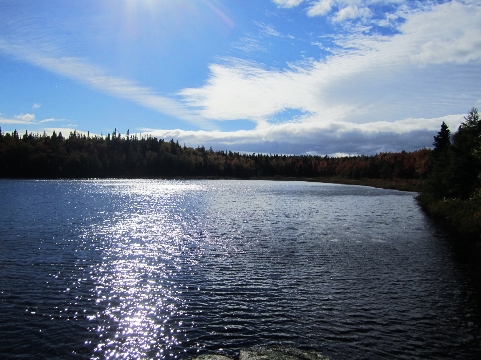 Jigging Cove Lake