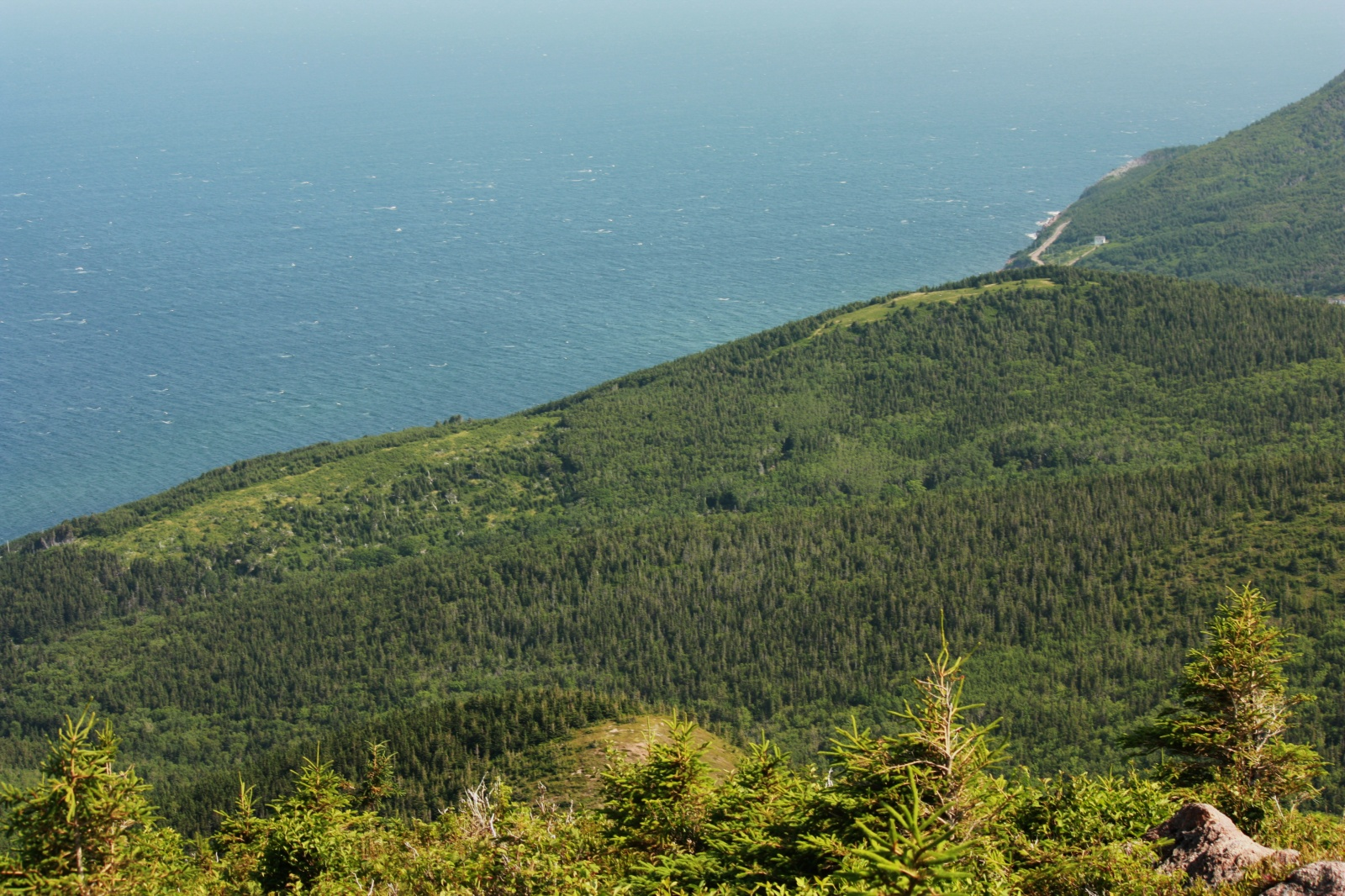View from Roberts Mountain.